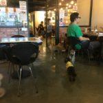 マレーシアの犬カフェーCafe Clawset
